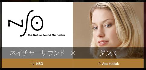 nso_asa_1.jpg